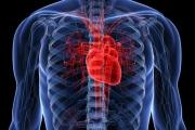 ¿Qué son los ataques silenciosos?: los enemigos del corazón sano